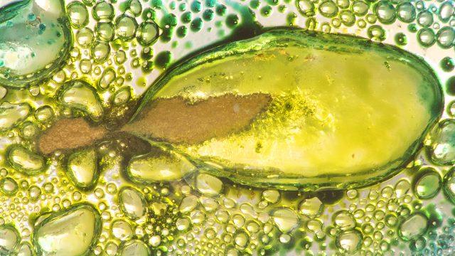 Linea de bisuteria de la marca Eco be Glass